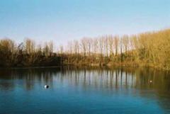 Duiken steengroeve Barges te Doornik @ De Barges | Tournai | Wallonie | België